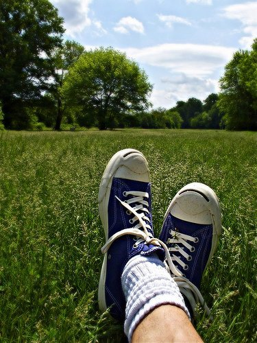 Sneakers grass photo