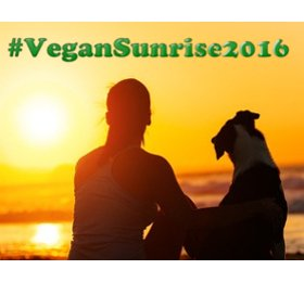 NL vegansunrise2016
