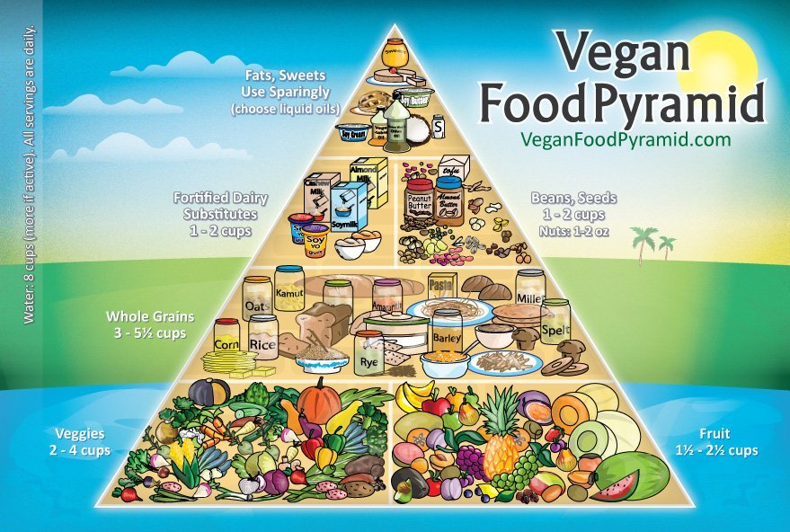 Vegan-Food-Pyramid-New-Joshua-Wold
