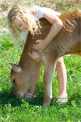 blonde girl jersey calf dreamstime_xs_16911425 Countrymama 160x240