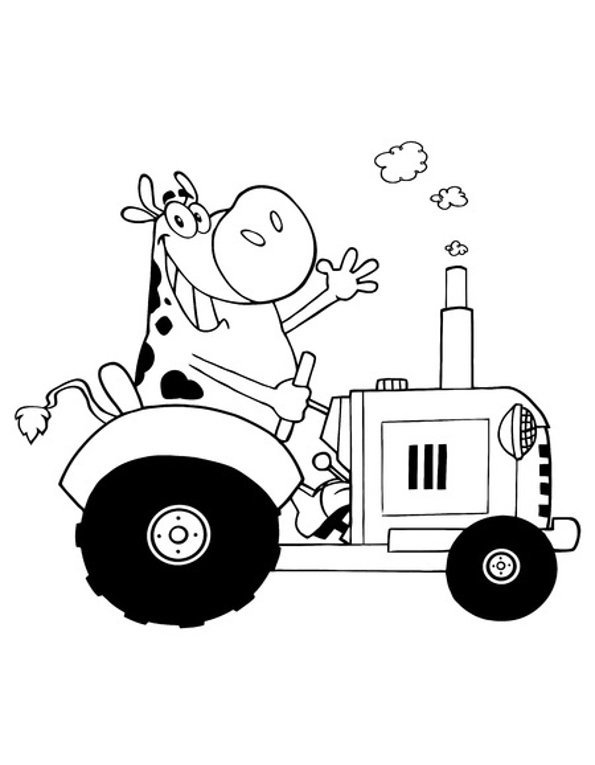 Print cow on tractor colouring in picture. Photo © 123RF Chudomir Tsankov.