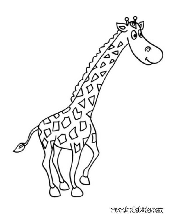 Print giraffe colouring in picture. Photo © www.hellokids.com