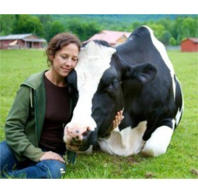 Photo © Jenny at Woodstock Farm Animal Sanctuary with Dylan the rescued and grown up veal calf.