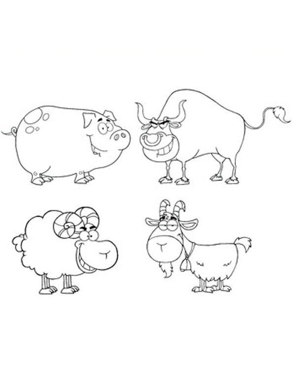 Print pig, ram, goat and bull colouring in picture. Photo © 123RF Chudomir Tsankov.