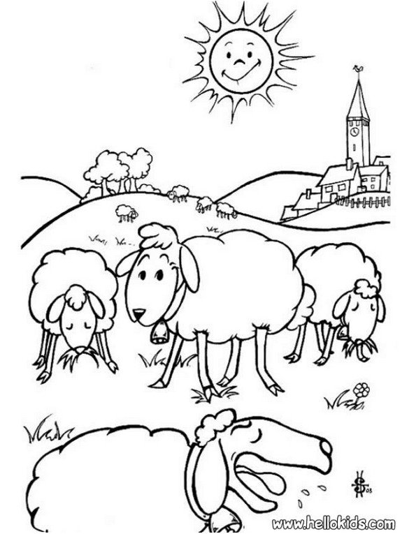 Print sheep colouring in picture. Photo © www.hellokids.com